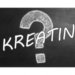 Kreatin bevitelt időzitése?